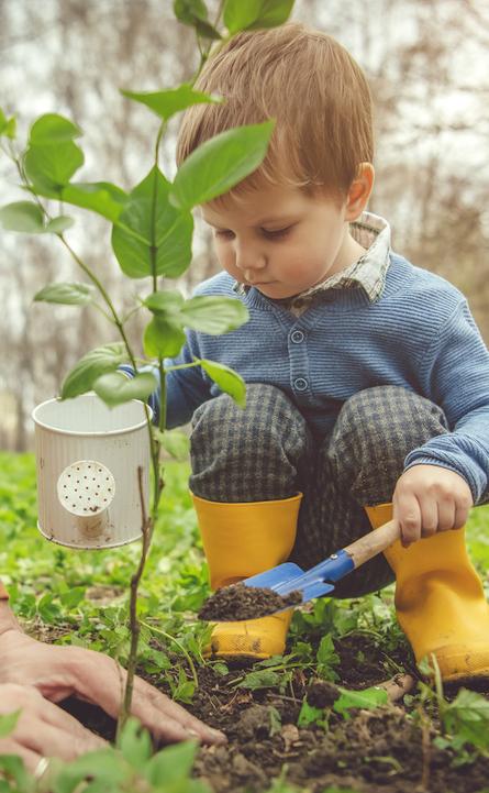 Terrific Tree Planting