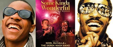 Some Kinda Wonderful: The Music of Stevie Wonder with Noel McCalla & Derek Nash Band