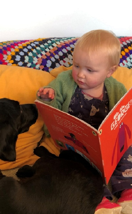 Story Time for Dogs